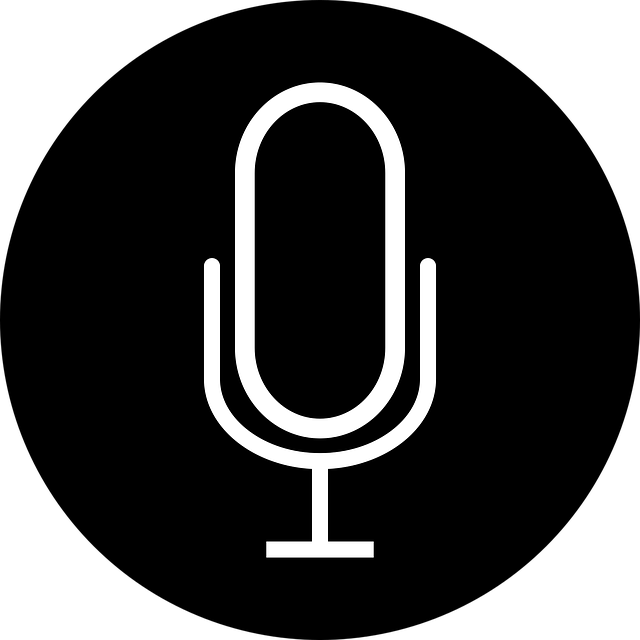 Intervjuer, modereringar, paneldiskussioner, radio och TV